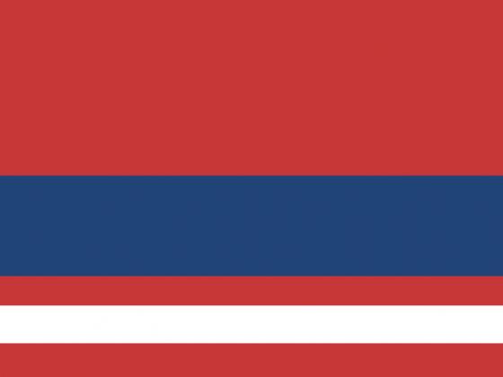 Flagge Lenko