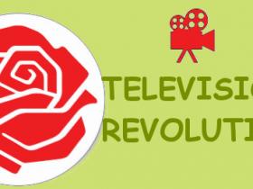 TelevisionRevolutionLogo
